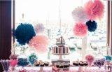 Des lanternes chinoises Babyshower Lampion mariage Pâques anniversaire boule Boule chinoise chinoise Sky lanternes