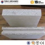 Máquina decorativa de venda quente do painel de parede de Tianyi para o concreto pré-fabricado