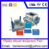 プラスチック型か型の注入の鋳造物