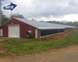 Pre-Проектированная дом цыпленка сарая птицефермы конструкции стальной структуры
