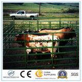 卸し売りアメリカ人12頭のフィートによって電流を通される家畜の牛パネルか使用された畜舎のパネル