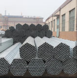 48.3mm Pre-Galvanizou a tubulação de aço/a câmara de ar/tubulação redondas de aço
