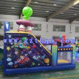 Cartoon étranger Inflatable Bouncer, Inflatable Castle à vendre