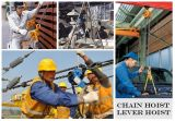 Prix favorable de qualité fiable grue de levier de 1.5 tonne (LH-WB)