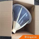4m DC12V 30W Solar LED Garden Lamp met Ce