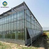 Multi Span la agricultura para los Tomates de invernadero de cristal