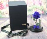 Neue Entwurfs-gute Qualitätskonservierte Rose-grosse Größe im Glas konservierte frische Blumen