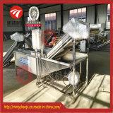 Máquina de lavar automática da limpeza da fruta fresca do SUS 304