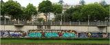 Peinture Spray Graffiti Pant Aeropak Fabriqué en Chine