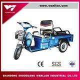 Los niños de energía eléctrica, transporte de carga de compras de supermercado triciclo moto