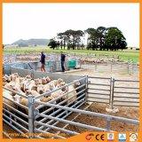 Съемные оцинкованного металла овец во дворе ограждения