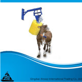 Крупного рогатого скота, щетка для чистки корпуса главного рынка Канады