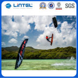 3.5m fliegende Fahnen-heiße Verkaufs-Feder-Markierungsfahnen-Fahne (LT-17C)