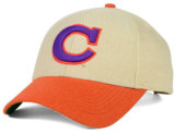 Embroidery Logoの紫色のColor Cotton Baseball Team Sports Hat