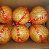 新しい穀物の新鮮な果物の中国の蜂蜜のPomelo