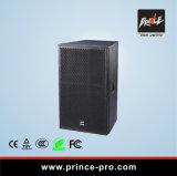 Singolo PRO audio altoparlante potente 15inch