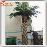 Konkurrenzfähiger Preis-im Freien künstliche Dattel-Palme für Garten-Dekoration