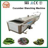 Automatische het Bleken van de Komkommer Machine en Plantaardige het Bleken Machine