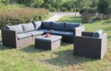 Guards outdoor Rattan Wicker sofa set