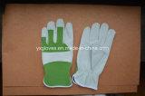 Industriële handschoen-Werkende het handschoen-Veiligheid handschoen-Werk handschoen-Hand Handschoen