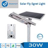 Lumière solaire directe de détecteur de mouvement de réverbère de l'usine IP65 DEL avec la batterie au lithium