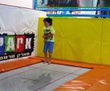 trampolín en línea de los trampolines de la compra del trampolín de los 8FT para la venta