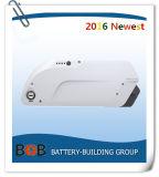 48V 2016년 범상어 Ebike 건전지 리튬 건전지 Li 이온 건전지 팩 리튬 이온 건전지 전기 자전거 건전지 아래로 거치된 건전지 재충전 전지