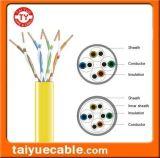CCA에 있는 UTP CAT6 Cable