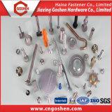Parafuso de fixação de aço inoxidável SS304/SS316 Parafuso Máquina ISO7380/DIN7981/DIN7985/