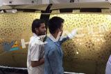 Macchina della metallizzazione sotto vuoto dell'alloggiamento di formato del tubo dello strato dell'acciaio inossidabile dell'oro dello stagno di PVD grande