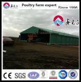 La norme ISO9001 Taux Birdsitter qualifiés poussins de chair de volaille poulet automatique du matériel agricole