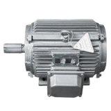 Baixa velocidade Biaxial personalizados gerador de Íman Permanente 3KW 30kw 300kw 3MW