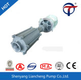 Vs6 avec la pompe à plusieurs étages d'acier inoxydable de pompe centrifuge de pompe plus au ralenti