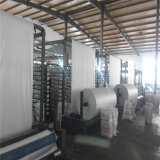 Vendite calde Cina un grande fornitore dei sacchetti di tonnellata pp FIBC con il prezzo di fabbrica