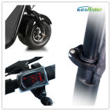 Ecorider Harleyの電気スクーターのCitycocoのスクータ