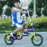 12 Zoll - hohe Qualitätskind-Fahrrad-/Kind-Fahrrad-heißer Verkauf