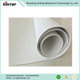 Tpo лист гидроизоляции мембраны для строительства