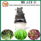 상업적인 양상추 세탁기 과일 오존 살균제 세탁기