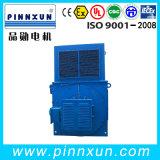 IP23 de Motor 1500kw van de Ring van de Misstap van de hoogspanning
