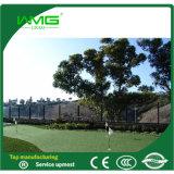 Hierba natural de la alfombra del jardín para el golf