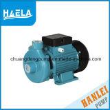 DK 0.37kw für elektrische zentrifugale Wasser-peripherpumpe (dk-14)
