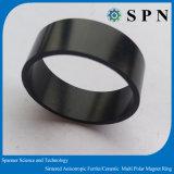 Magnete di Permanetneodymium del magnete di Stong NdFeB/magnete urgente caldo di NdFeB