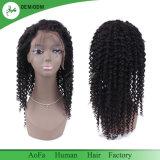 В полной мере кружева кружева Wig Wig передней Virgin человеческого волоса кружева парики