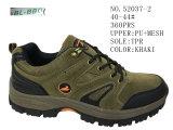 Numéro 52037 trois chaussures courantes de hausse extérieures d'hommes de couleurs