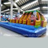 Aoqi Design Inflatable Funny Water Slide Park per Kid (aq10102)