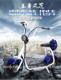 Motocicleta elétrica de venda quente de 2016 Citycoco mini Harley