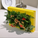 ABS Frame Green Mini Wall Garden