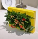ABSフレームの緑の小型壁の庭