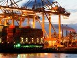 Transporte de carga seguro de Shenzhen para Atlanta, GA