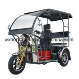 中国、110ccの障害がある大人の三輪車の製造業者は三輪車を禁止状態にした